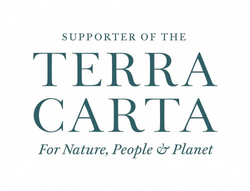 Terra Carta. What is it and why we support it?