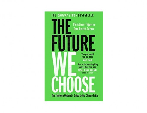 The Future We Choose Book Review